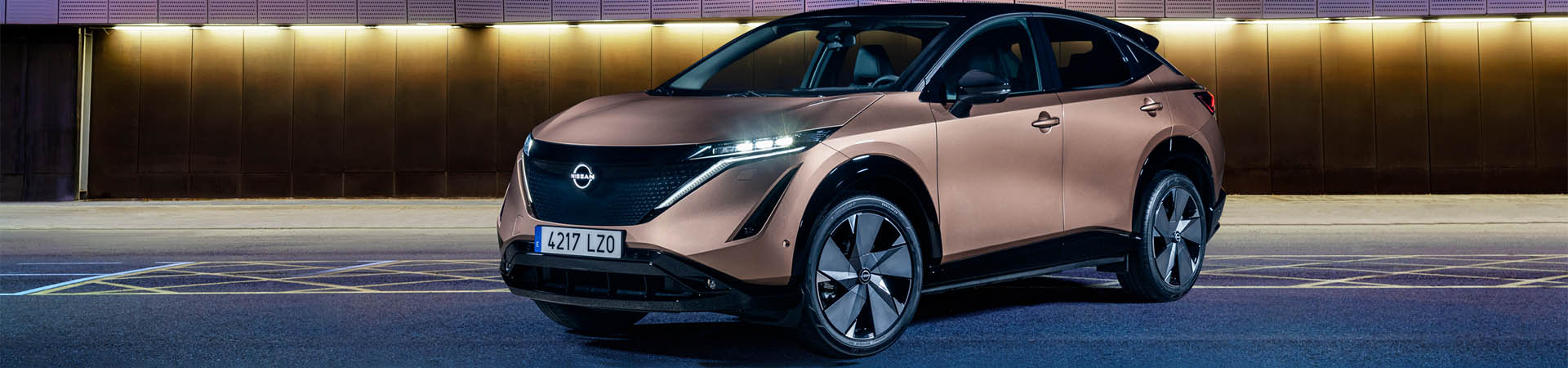 Nissan Elektrofahrzeuge